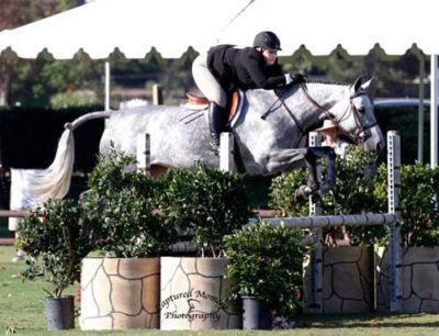 Chelsea Samuels and Twinkle Low A/O Hunter 18-35 2013 Blenheim Fall Tournament Photo Captured Moment Photography