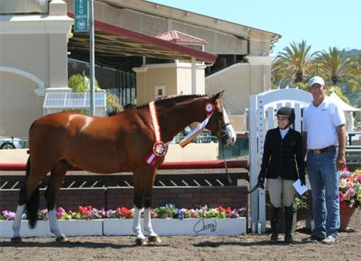 Laura Wasserman and Safari Reserve Champion Amateur Owner Hunter 36 & Over 2014 Del Mar National Photo Osteen