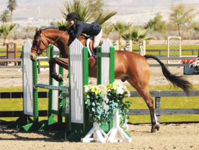 Lily Blavin and Montague Large Junior Hunter 15 & Under 2013 HITS Desert Circuit Photo Savannah Stuart
