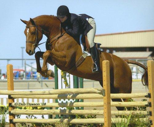 Tina Dilandri and Pringle Champion Small Junior Hunters 2008 Scottsdale Spring Classic Photo Deb Dawson