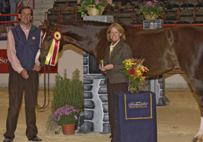 Andiamo owned by Janie Andrew Reserve Champion 2nd Year Green Hunter 2007 Pennsylvania National Photo Randi Muster