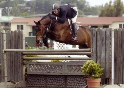 Archie Cox and Quality Time owned by Laura Wasserman Regular Conformation Hunter Champions 2007 Del Mar National Photo Ed Moore