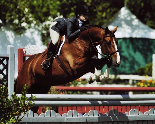 Ashley Pryde and Falcao owned by Brook Flynn Champion Small Junior Hunters 16-17 2009 Menlo Photo JumpShot