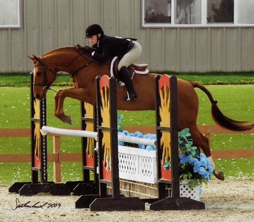 Ashley Pryde and Pringle Circuit Champion Small Junior Hunters 16-17 2009 HITS Desert Circuit Photo Flying Horse