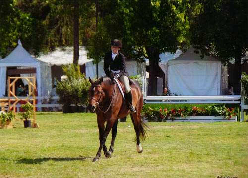 Ashley Pryde and Truly Grand Champion A/O Hunter 2012 Menlo Charity Horse Show Photo Bella Peyser
