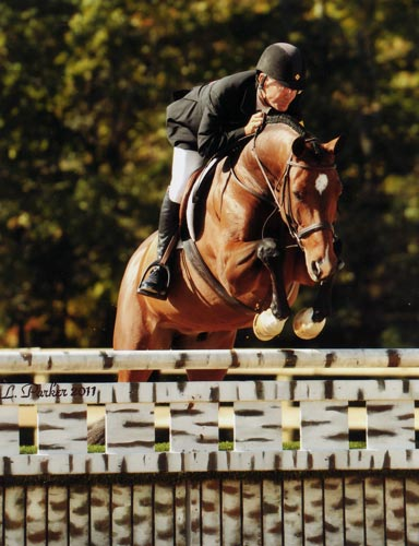 John French and Beckham owned by Gina Ross 2011 Capital Challenge Photo JL Parker