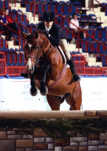 Montague owned by Lily Blavin 2012 National Silver Stirrup Performance Horse Champion Conformation Hunters Photo Al Cook