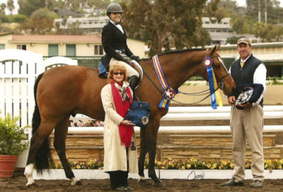 Overseas owned by Laura Wasserman Classic Champion Amateur-Owner Hunter 2009 Del Mar National Photo Osteen