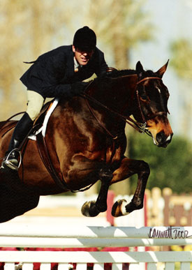 Pharoah owned by Stephani Danhakl and Peter Lombardo Reserve Champion 2002 Pacific Coast Horse Show Association Conformation Hunters Photo Cathrin Cammett