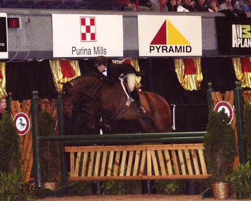 Virginia Fout and Classified A/O Hunters 36 & Over 2008 Syracuse Invitational Photo Reflections