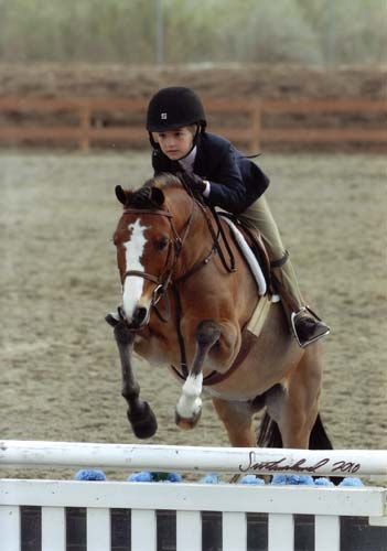 Wiley Nelson and Rainbow Canyon owned by Wild Sky Farm Small Pony Hunters 2010 HITS Desert Circuit Photo Flying Horse