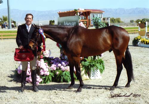 Archie Cox and After Five owned by Stephanie Danhakl Champion First Year Green Hunters ridden by John French 2010 HITS Desert Circuit Photo Flying Horse