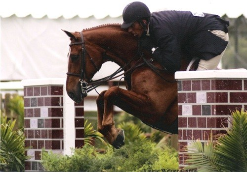 Archie Cox and Fenwick owned by Amy Brubaker 2006 USEF National Champion Regular Conformation Hunters Photo Laurie Weiner