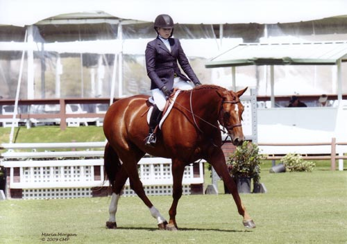 Ashley Pryde and Pringle Champion Small Junior Hunters 16-17 2009 Blenheim Spring Photo Captured Moment Photography