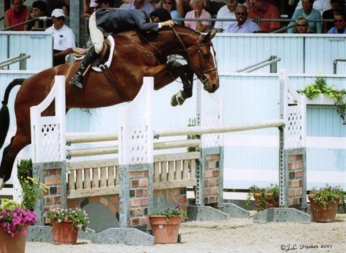 John French and Overseas owned by Laura Wasserman Regular Working Hunter Stake Winner 2007 Devon Horse Show Photo JL Parker