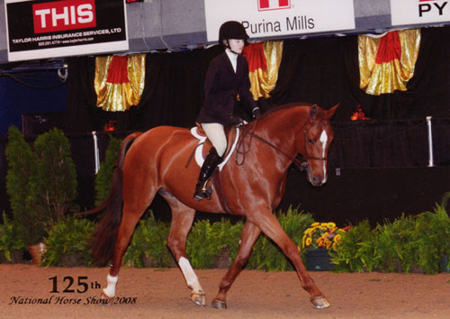 Lucy Davis and Red Rooster owned by Old Oak Farm Small Junior Hunter 125th National Horse Show at Syracuse Invitational 2008 Photo Reflections