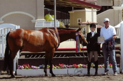 Montana Coady and Winnetoe Champion Amateur Owner Hunter 18-35 2014 Del Mar National Photo Osteen