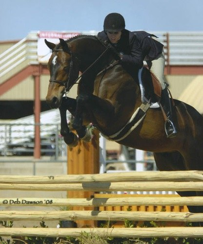 Tina Dilandri and Truly Champion Large Junior Hunters 2008 Scottsdale Spring Classic Photo Deb Dawson