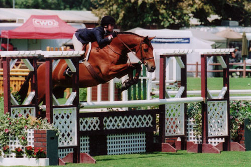 Delanie Stone and White Oak Large Junior Hunters Oaks Blenheim 2008