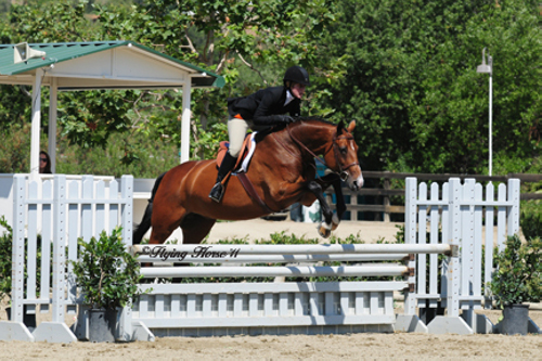 Harriet Posner and Corinna Reserve Champion Adult Hunter Blenheim 2011 Photo Flying Horse