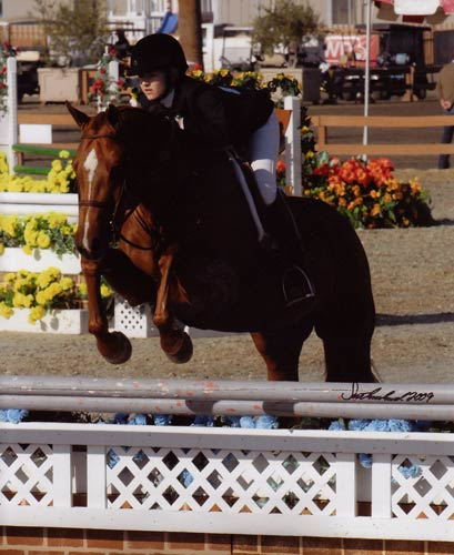 Lucy Davis and Red Rooster Reserve Circuit Champion Small Junior Hunters 16-17 2009 HITS Desert Circuit Photo Flying Horse