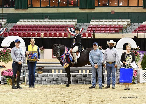 Stella Wasserman and Trillville WCHR Pony Hunter Challenge Champion 2016 Capital Challenge Photo by Shawn McMillen