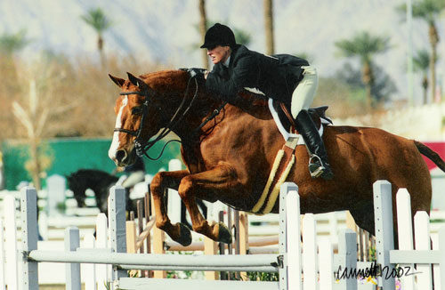 Alison Agley and Archie Champion Amateur Owner Hunters 18-35 2002 HITS Desert Circuit Photo Cathrin Cammett