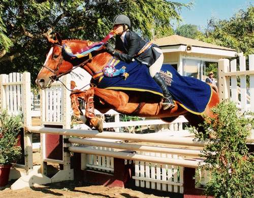 Amy Brubaker and Well to Do Champion 2005 California Professional Horsemans Foundation Medal 22 & Over 2005 Showpark Photo JumpShot