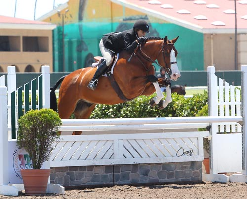 Laura Wasserman and Safari Amateur Owner Hunter 36 & Over 2014 Del Mar National Photo Osteen