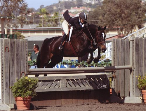 Laura Wasserman and Sports Talk A/O Hunters 36 & Over 2008 Del Mar National Photo Osteen