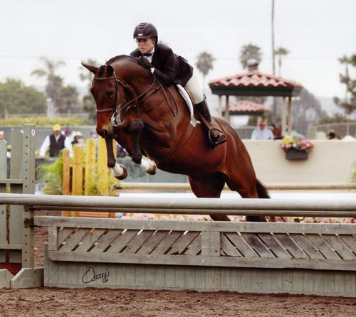 Virginia Fout and Off the Record Pregreen Hunters 2011 Del Mar National Photo Osteen