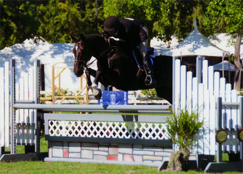 "Archie Cox and Couture Couture owned by Bella Peyser 3'6"" Performance Hunters 2012 Menlo Charity Horse Show Photo Bella Peyser"