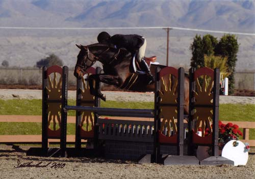 John French and Victory Road owned by Ashley Pryde Circuit Champion First Year Green Hunters 2010 HITS Desert Circuit Photo Flying Horse