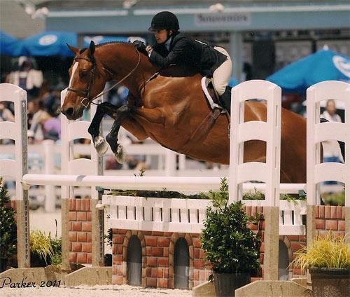 Laura Wasserman and Overseas Amateur/Owner Hunter 2011 Devon Horse Show Photo JL Parker