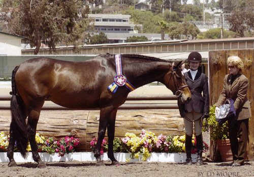 Lucy Davis and Harmony owned by Old Oak Farm Large Junior Hunter Champion 14 & Under 2006 Del Mar National Photo Ed Moore