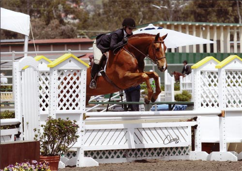 Polly Sweeney and Well Played Low Amateur Owner 36 & Over 2012 Del Mar National Photo Osteen