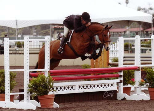 "Archie Cox and Equity owned by Gina Ross 3'3"" Pregreen Hunter 2012 Del Mar National Photo Osteen"