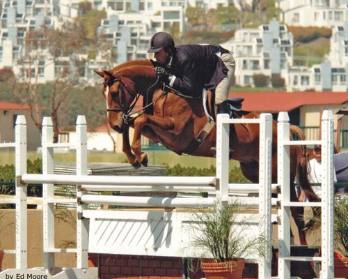 Archie Cox and Fenwick owned by Amy Brubaker Regular Conformation Hunter 2006 Del Mar National Photo Ed Moore