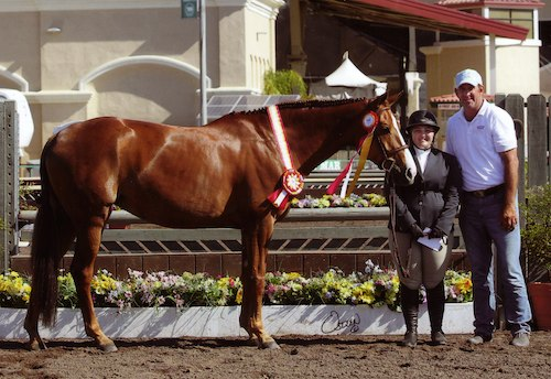 "Chelsea Samuels and Adele Reserve Champion 3'3"" Amateur Owner Hunter 18-35 2014 Del Mar National Photo Osteen"