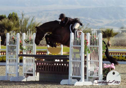 Laura Wasserman and Overseas Champion A-O Hunters 36 & Over 2010 HITS Desert Circuit Photo Flying Horse