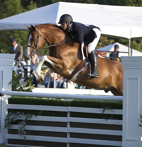 Nick Haness and Ecole Lathrop's Banderas Winner $10,000 USHJA Hunter Derby 2014 Menlo Charity Photo Alden Corrigan