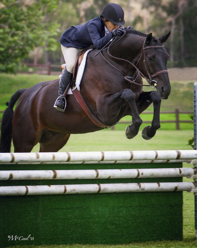 "Laura Wasserman and Thoughtful Amateur Owner Hunter 3'3"" 2013 Blenheim June Photo Amy McCool"