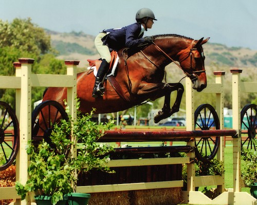 Lucy Davis and Harmony Large Junior Hunter 2006 Oaks Blenheim Photo by JumpShot