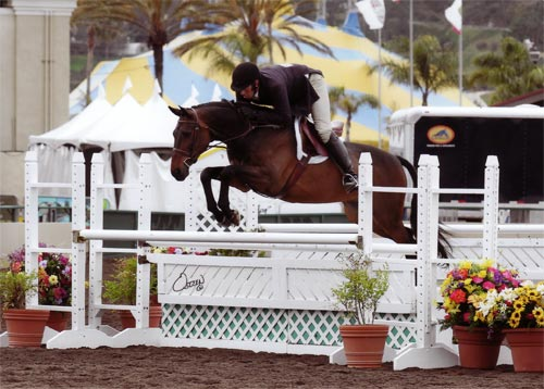 Archie Cox and Victory Road owned by Harriet Posner Champion Regular Conformation Hunter 2012 Del Mar National Photo Osteen