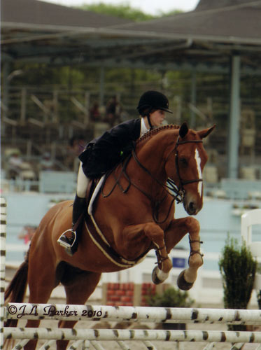 Gabbi Langston and Azian owned by Fastball Farm Large Junior Hunters 16-17 2010 Devon Horse Show Photo JL Parker