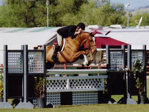 John French and Wesley Oaks Blenheim 2008 Photo Cathrin Cammett