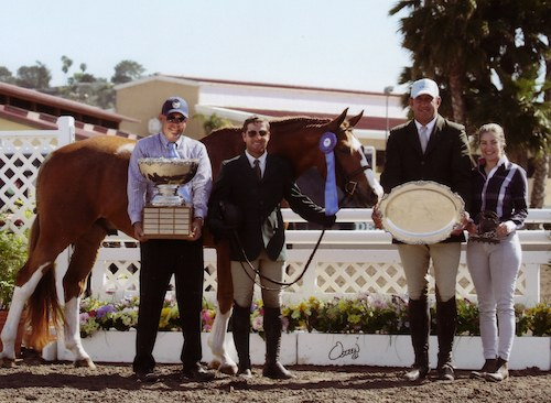 Nick Haness and Banderas owned by Ecole Lathrop Champion High Performance Hunter 2014 Del Mar National Photo Osteen