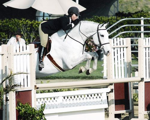 Nicole Kim and Rodeyo Qualified in 2004 for Penn National Washington International and Metropolitan National Large Jr Hunters 16-17 Blenheim Photo by JumpShot