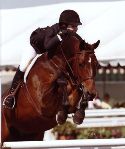 Shelby Wakeman and Quality Time Large Junior Hunters 2008 Del Mar National Photo Osteen