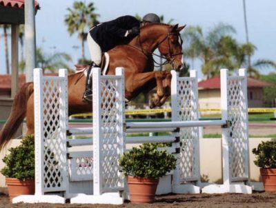 Archie Cox and Red Label owned by Glenda Lippman Winner 1st Year Green Hunters 2007 Palms Classic Photo Cathrin Cammett